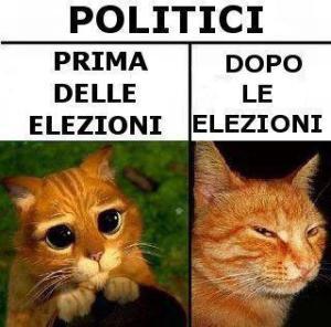 politici-elezioni