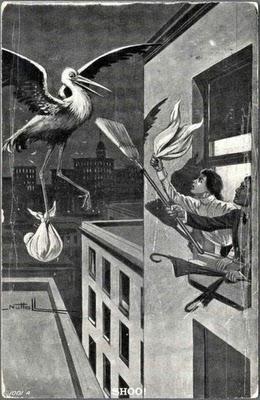 cicogna scopata