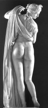 fig-8-venere-callipigia